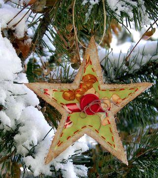 HUSA Ornament 2