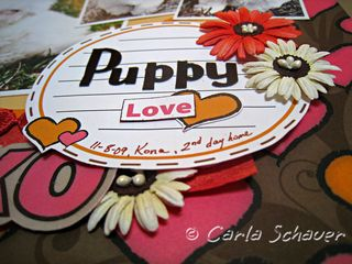 Puppy-love-dimension_web