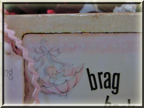 Girl brag book closeup of crackle