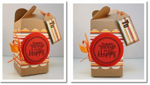Happy Dance Packaging Main