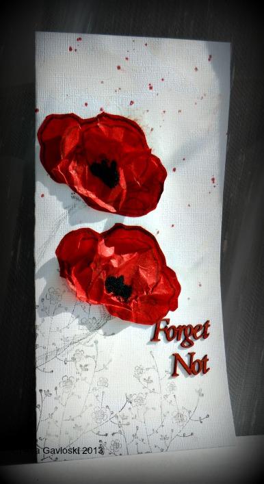 Poppy forget not