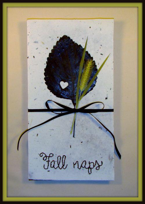 Fall Naps - sandee setliff
