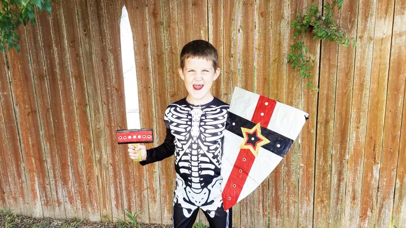 Skeleton knight costume sheild cover